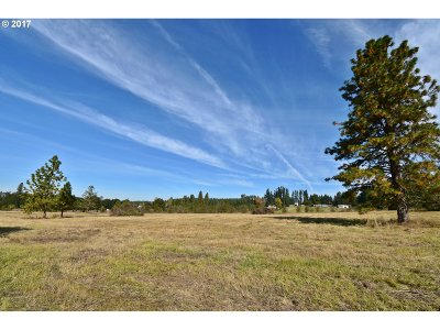 Scio Residential Lots & Land Pending: Richardson Gap Rd #311