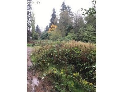 Portland Single Family Home For Sale: 11700 SW 35th Ave