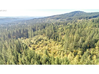 Camas Residential Lots & Land For Sale: 9452 NE Winters Rd