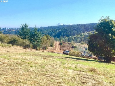 Newberg, Dundee Residential Lots & Land For Sale: SW Hillsboro Hwy