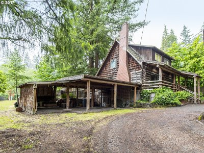 Lake Oswego Single Family Home For Sale: 13561 Goodall Rd