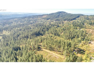 Camas Residential Lots & Land For Sale: Tbd 3