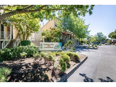 Portland Condo/Townhouse For Sale: 245 N Hayden Bay Dr #Bld i