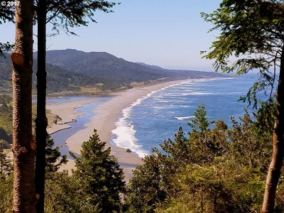 Gold Beach OR Residential Lots & Land For Sale: $495,000