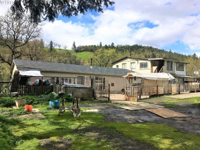 Roseburg Single Family Home For Sale: 14461 North Umpqua Hwy