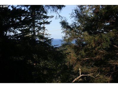 Gold Beach Residential Lots & Land For Sale: 28325 Hunter Creek Hts