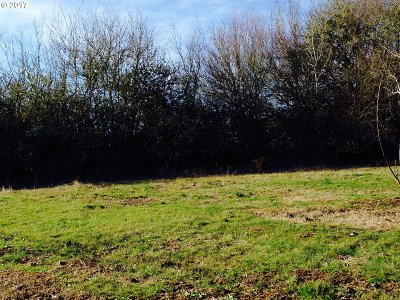 Hillsboro, Cornelius, Forest Grove Residential Lots & Land For Sale: 2838 19th Ave
