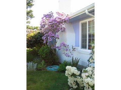 Brookings Single Family Home For Sale: 427 Buena Vista Loop
