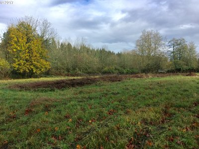 Camas, Washougal Residential Lots & Land For Sale: SE Everett Rd #5