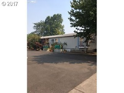 Springfield Single Family Home For Sale: 3522 Main St
