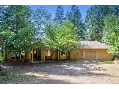 Washougal Single Family Home For Sale: 35602 NE Ammeter Rd