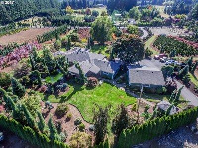 Sandy Single Family Home For Sale: 23242 SE Bornstedt Rd