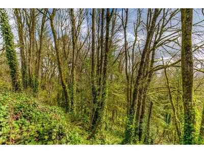 Residential Lots & Land For Sale: 5144 SW Northwood Ave