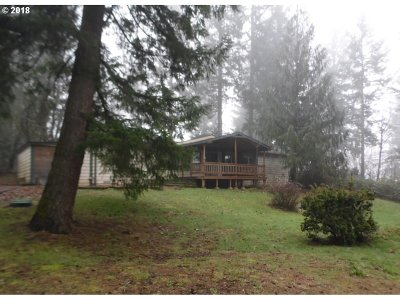 Battle Ground Single Family Home For Sale: 22905 NE 242nd Ave