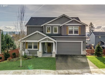 Washougal Single Family Home For Sale: 3650 Q St
