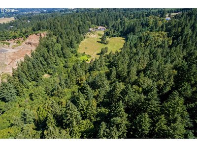 Newberg, Dundee Residential Lots & Land For Sale: NE Wilsonville Rd