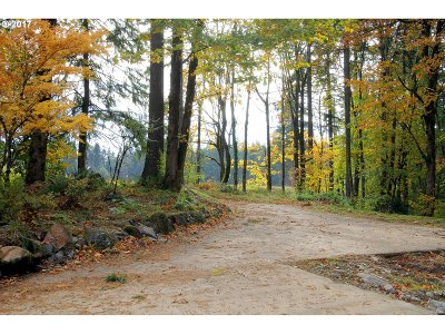 Happy Valley, Clackamas Residential Lots & Land For Sale: 15383 SE Sacagawea St #51