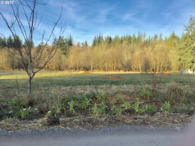 Camas, Washougal Residential Lots & Land For Sale: SE 5th St #1