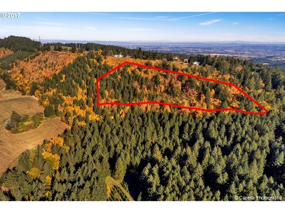Hillsboro Farm & Ranch For Sale: 17501 NE Guenther Rd