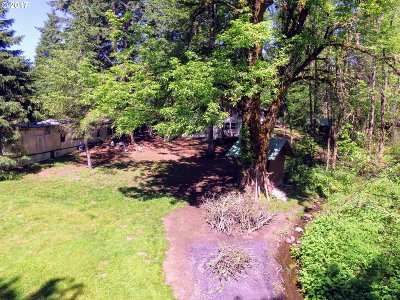 Stevenson Single Family Home For Sale: 1204 Kanaka Creek Rd