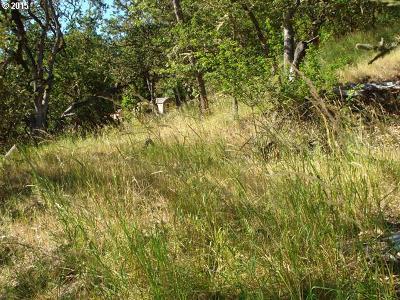 Roseburg Residential Lots & Land For Sale: 903 NE Parkview Ct
