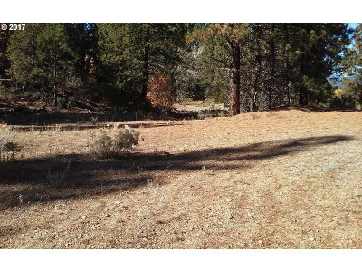 Sumpter OR Residential Lots & Land For Sale: $115,000