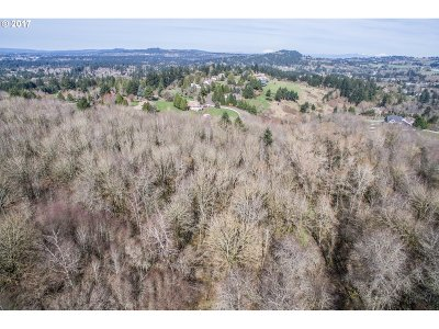 Tualatin Residential Lots & Land For Sale: 22369 SW Stafford Rd