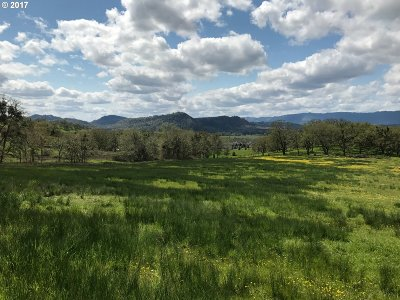 Roseburg OR Residential Lots & Land For Sale: $150,000