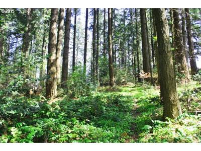 Tigard Residential Lots & Land For Sale: 14160 SW Fern St