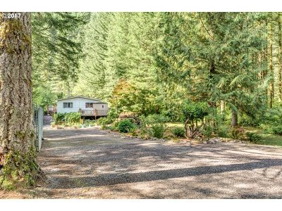 Washougal Single Family Home For Sale: 16601 Washougal River Rd