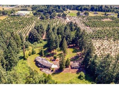 Newberg, Dundee Single Family Home For Sale: 29455 NE Wilsonville Rd