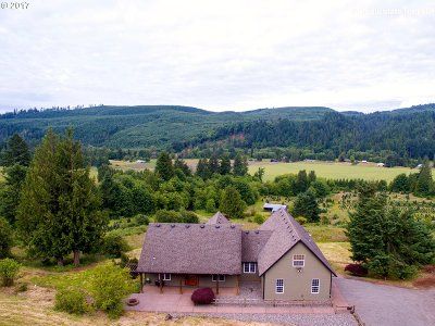 North Plains Single Family Home For Sale: 22034 NW Dairy Creek Rd