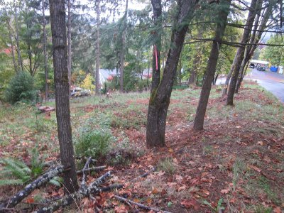 Springfield Residential Lots & Land For Sale: Summit Blvd