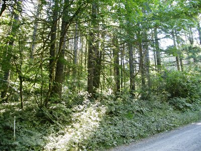 Hillsboro, Forest Grove, Cornelius Residential Lots & Land For Sale: NE Finnigan Hill Rd