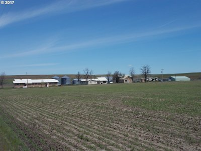 Farm & Ranch For Sale: 72529 Umbarger Rd