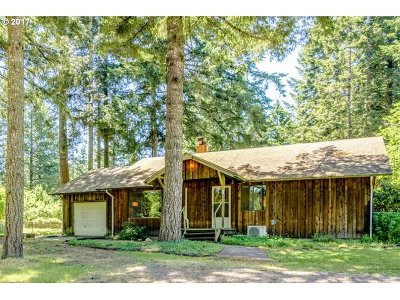 Newberg, Dundee Single Family Home For Sale: 34525 NE Wilsonville Rd
