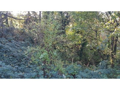 Camas, Washougal Residential Lots & Land For Sale: 3000 SW 6th Ave