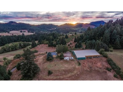 McMinnville Single Family Home For Sale: 17566 NW Baker Creek Rd