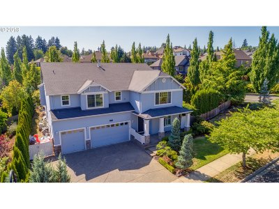 Happy Valley, Clackamas Single Family Home For Sale: 12817 SE Meadehill Ave