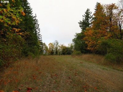 Gold Beach OR Residential Lots & Land For Sale: $59,000