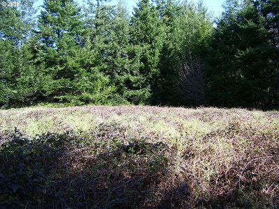 Bandon Residential Lots & Land For Sale: NE Fahy Ave