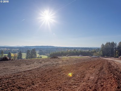 Camas Residential Lots & Land For Sale: NE 264 Ct #Lot10