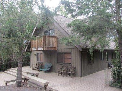 Roseburg Single Family Home For Sale: 9478 South Bank Dr