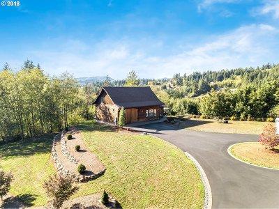 Yacolt Single Family Home For Sale: 17900 NE Fargher Lake Hwy