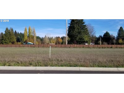 Battle Ground Residential Lots & Land For Sale: 2825 NE 9th Ave