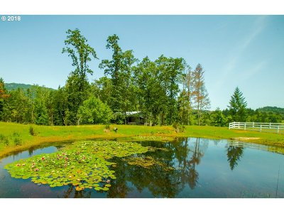 Roseburg Single Family Home For Sale: 3508 Doerner Cutoff Rd