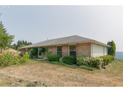 Cowlitz County Single Family Home For Sale: 2521 Mt Pleasant Rd
