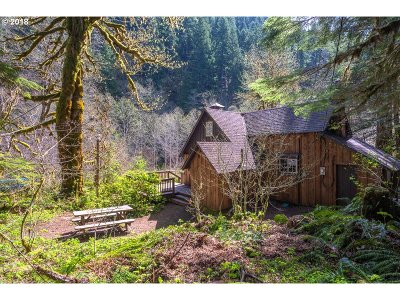 Rhododendron Single Family Home For Sale: 29372 E Still Creek Rd Lt79