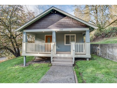 Cowlitz County Single Family Home For Sale: 230 Haussler Rd