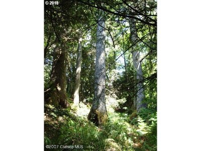 Cannon Beach Residential Lots & Land For Sale: Birch St